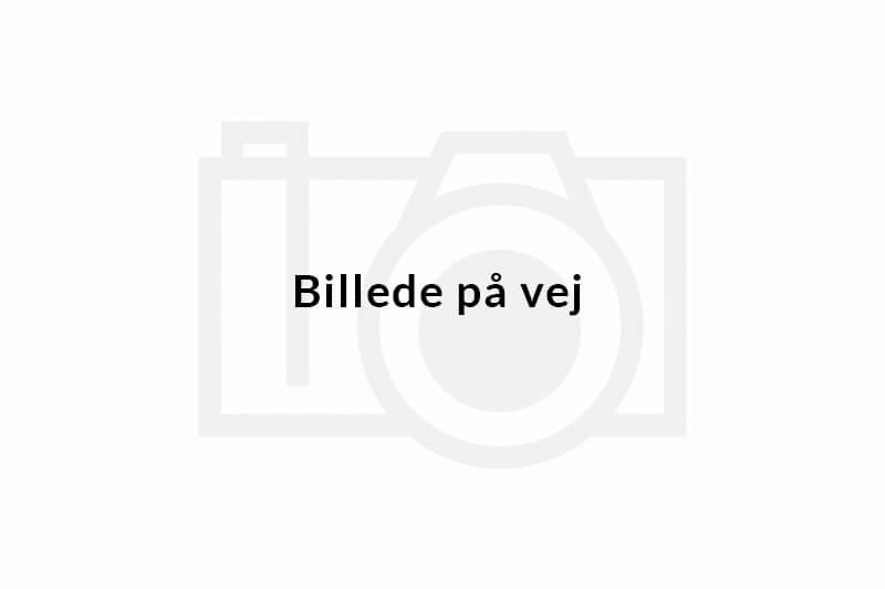 Dan Svendsen